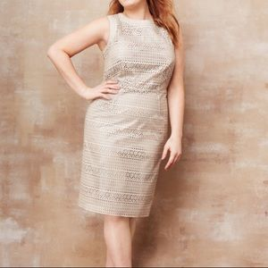 CALVIN KLEIN NWT perforated faux leather dress 14W